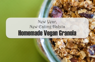 granola banner