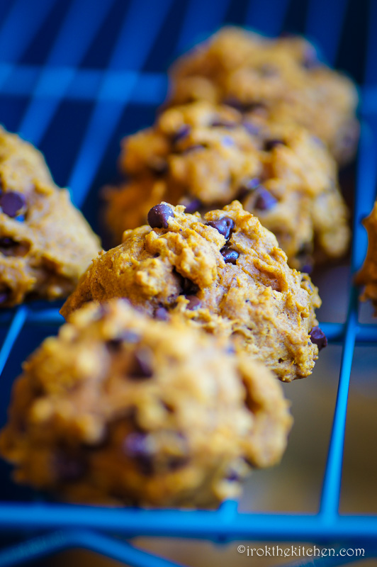 Pumpkin Chocolate Chip Cookies-23