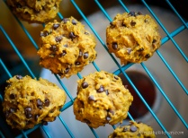 Pumpkin Chocolate Chip Cookies-24