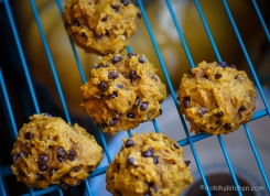 Pumpkin Chocolate Chip Cookies-25