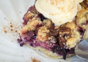 Berry Rhubarb Crumble Bars-17