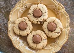 gluten-free-peanut-butter-chocolate-cookies-8