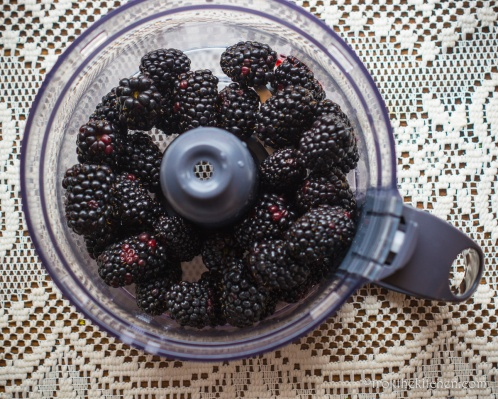 Blackberry Fool-1